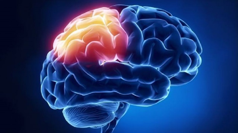 cognition boosting ability